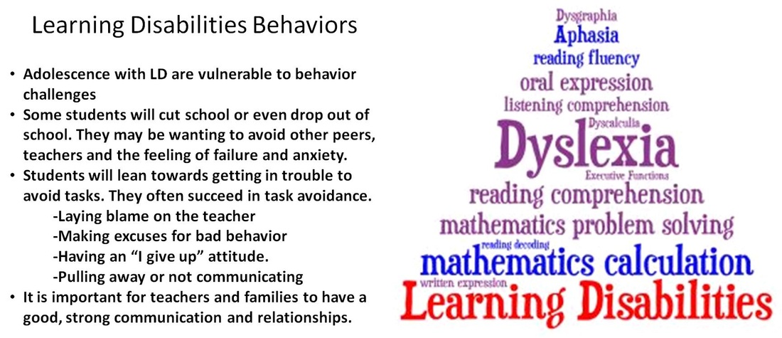 a look at behavioral disabilities Disruptive behavior disorders the difference between disruptive behavior disorders and differences in brain development may look like disruptive behavior.
